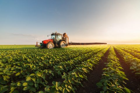 Grain Insurance – A Right move to Grow Your Business