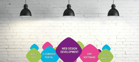 Salient Features of Customised Website Design and Development